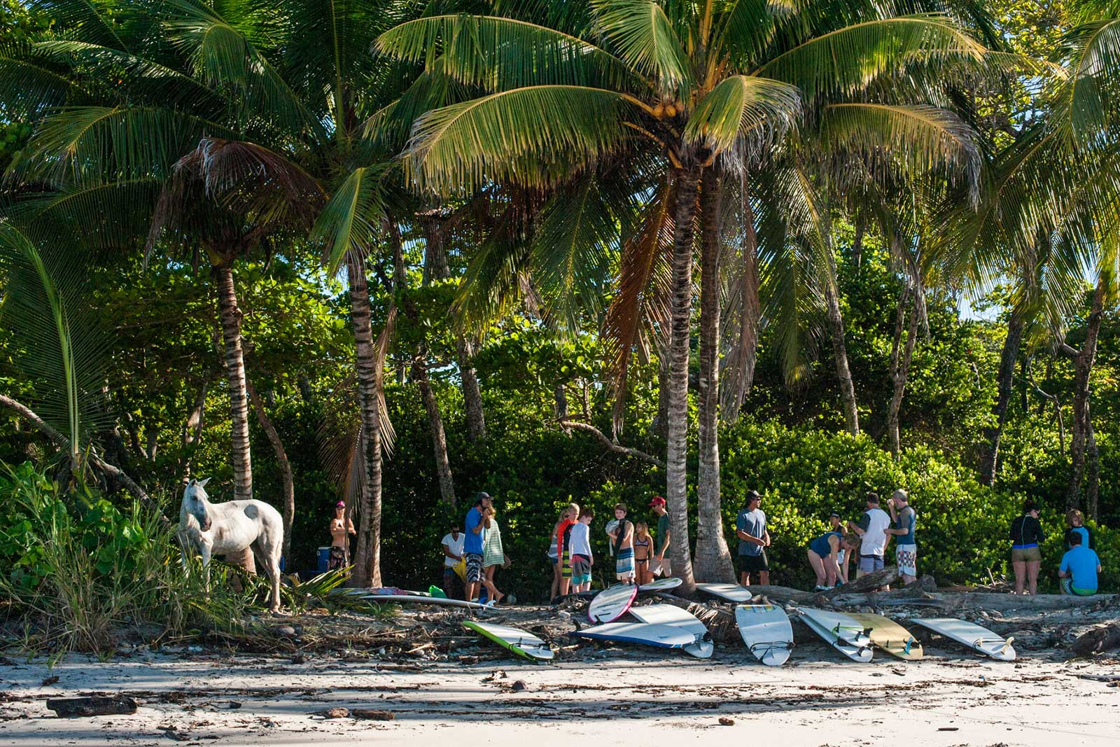 Beach Front Accommodation, Top of the Line Surf Boards, Professional Surf Coaching, Costa Rica