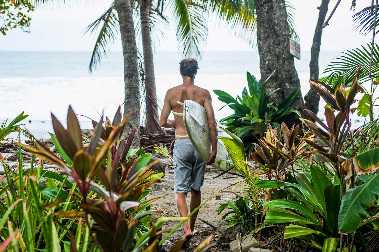 Montezuma Surf Camp